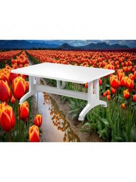 Plastični stol Gardelia